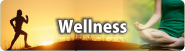 Wellness Tourism in India